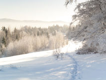 Foot path - winter Stock Image