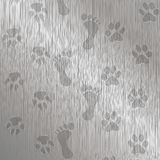 Foot-Paw Print Stock Photography