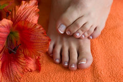 Foot with pedicure Stock Photo