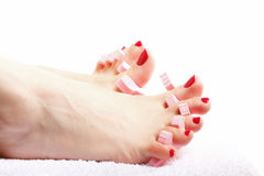 Foot pedicure applying red toenails on white Stock Photography
