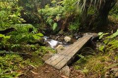 Foot Plank Bridge Royalty Free Stock Image