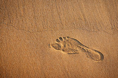 Foot print Stock Image