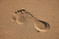Foot print. In Porto Santo beach sand Stock Photography