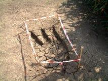 Foot Print 2. This is fake dinosaur footprint stock photo