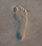 Foot print. In the sand Stock Photos