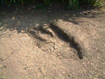 Foot Print. This is fake dinosaur footprint royalty free stock photos