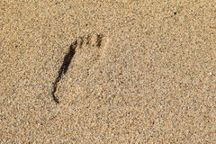 Foot print on the beach Royalty Free Stock Photo
