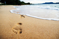 Foot print on the beach Stock Image