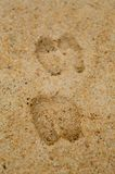 Foot Print on Brown Sand Royalty Free Stock Photography
