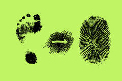 Foot print and finger print Royalty Free Stock Photos