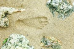 Foot Print. A foot print that imprint in the sand Royalty Free Stock Images