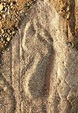 Foot print. Of human on a sandy ground stock photos