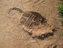 Foot print in red soil Royalty Free Stock Photography
