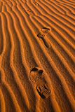 Foot print in Sahara Desert Royalty Free Stock Images