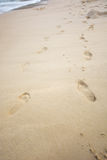 Foot print in sand beach Royalty Free Stock Photo