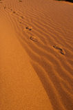 Foot print on sand Royalty Free Stock Images