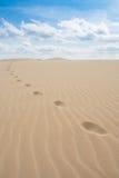 Foot print  in sand dunes in Viana desert - Deserto de Viana in Stock Photo