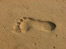 Foot print on sand. Overhead view of a footprint on sand Stock Image