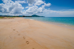 foot print on sandy beach Stock Photo