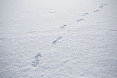 Foot print on snow ground Royalty Free Stock Photography