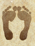 Foot Prints. Of a wet foot on a rough surface Royalty Free Stock Images