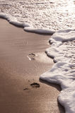 Foot prints Stock Photography