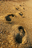 Foot prints. In the sand stock photo