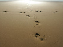 Foot Prints. In The Sand Royalty Free Stock Photo
