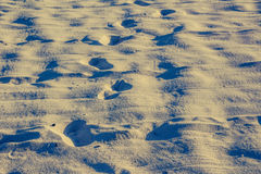 Foot prints on beach sand photograph Stock Photography