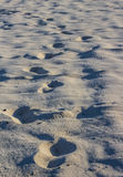 Foot prints on beach sand photograph Royalty Free Stock Photography