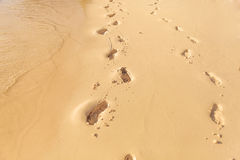 Foot prints on the beach of seychelles Royalty Free Stock Photo