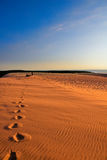 Foot prints on dune Stock Images