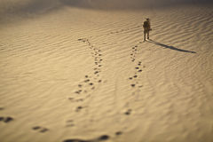 Foot prints and a explorer in the sand in Blur style. Tilt–shift photography. Royalty Free Stock Photography