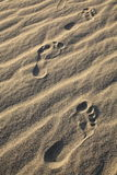 Foot prints of human on a beach. Royalty Free Stock Images