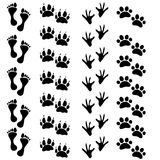 Foot prints human hen paw cat dog Stock Photography