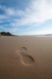 Foot Prints On The Beach Stock Photo