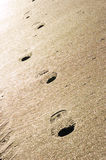 Foot prints in the sand. With golden sunset Royalty Free Stock Photo