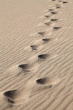 Foot Prints in the Sand. Foot Prints in the rippled desert sand Stock Images
