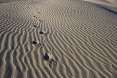 Foot Prints in Sand – Death Valley - Horizontal Royalty Free Stock Image
