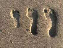 Family's foot prints in the sand stock image
