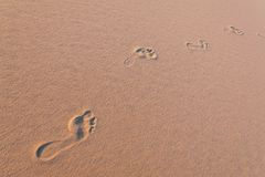 Sand dunes with foot prints stock photo