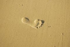 Foot prints in the sand. Foot prints pressed in wet sand Stock Photo