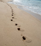Foot prints on sandy paradise beach Royalty Free Stock Photos