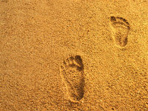 Foot prints on sea beach sand Royalty Free Stock Photography