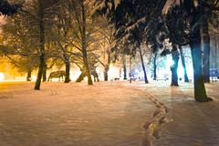 Foot prints in snow park winter view royalty free stock photo