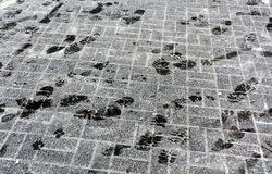 Foot prints on snowy pavement. Royalty Free Stock Image