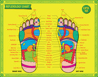 Foot reflexology chart Stock Images