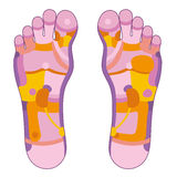 Foot reflexology pink Royalty Free Stock Photo