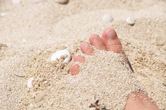 Foot in the sand. Foot half buried in the sand Royalty Free Stock Photography