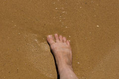 Foot in the sand Royalty Free Stock Image